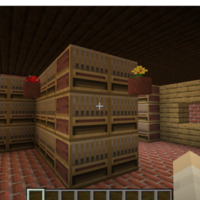 Minecraft 1.15.2 - Multiplayer (3rd-party) 5_1_2020 8_23_16 PM.png